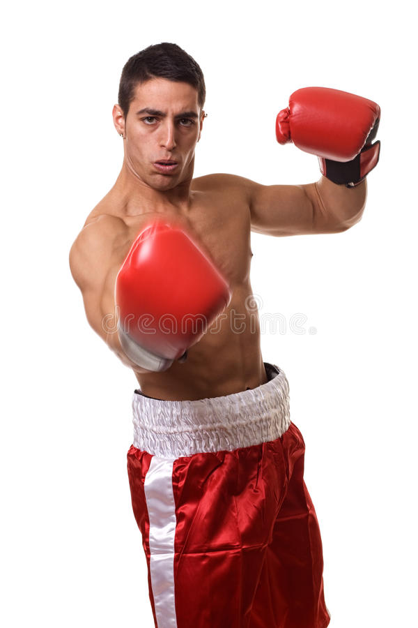 Boxer. In red trunks. Studio shot over white royalty free stock image