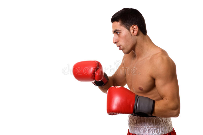 Boxer. In red trunks. Studio shot over white stock images