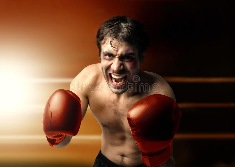 Download Boxer stock image. Image of male, fight, teeth, punch - 24768429