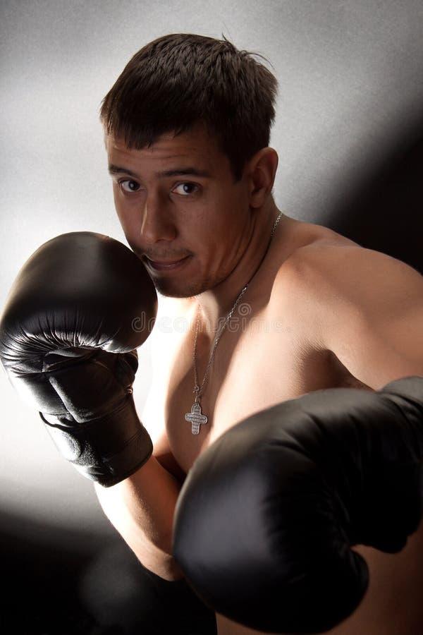 boxer royalty-vrije stock foto