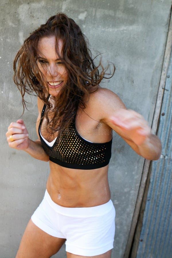 Free Boxer Royalty Free Stock Photo - 8834125