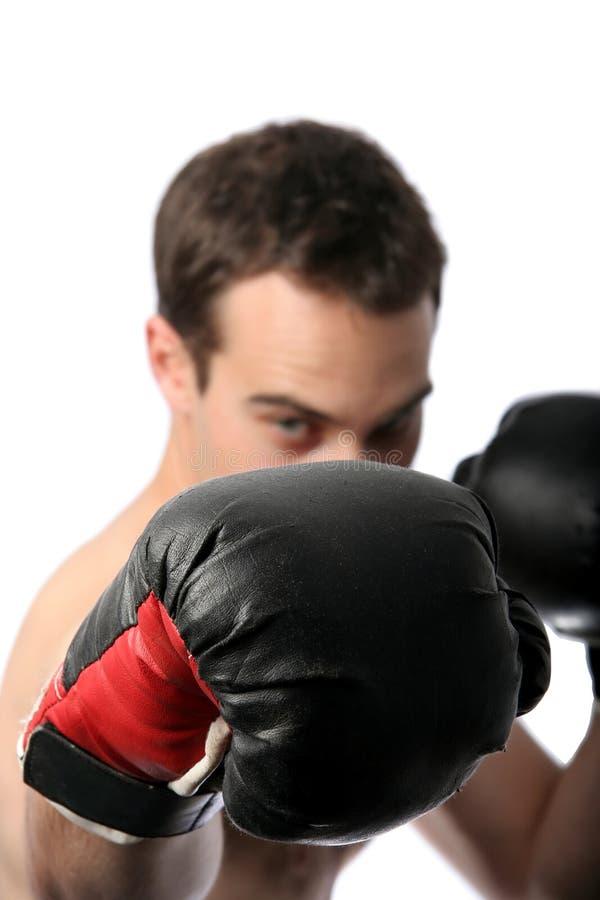 Boxer Abstract Stock Photo