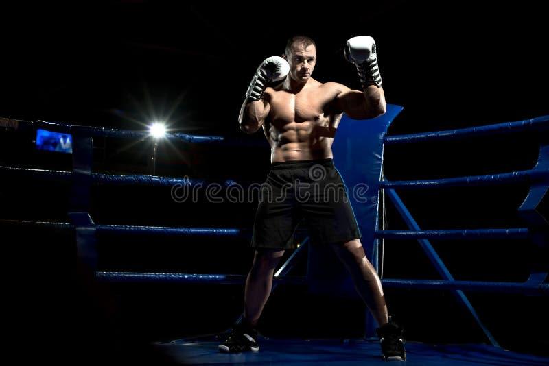 Boxer auf Boxring stockfotografie