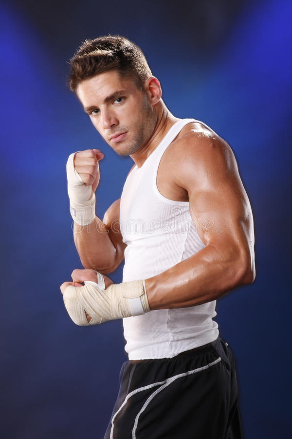 Boxer on blue stock photography
