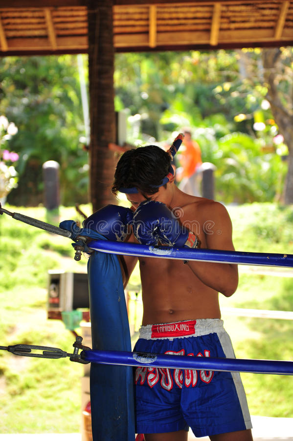 Boxer in concetration stock image