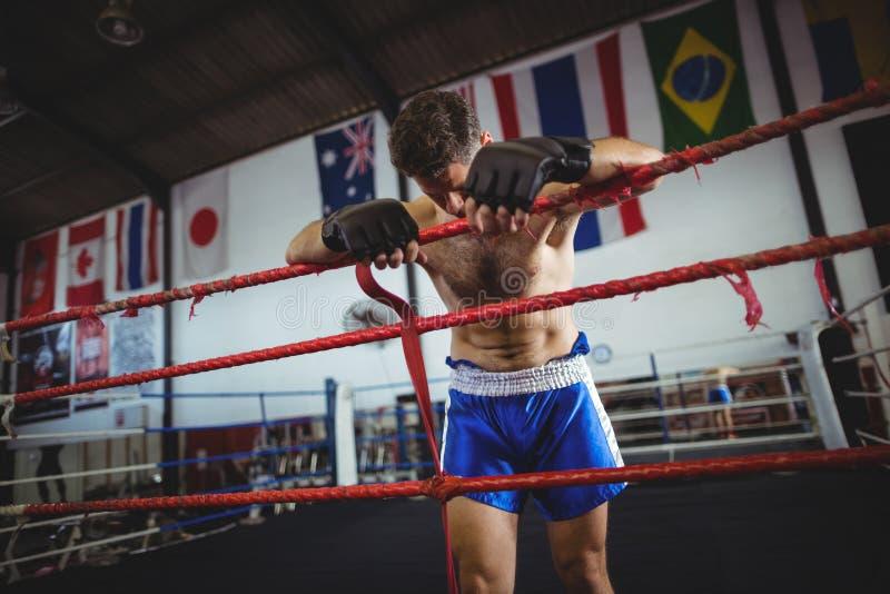 Boxer, der nach Niederlage aufwirft lizenzfreie stockfotos