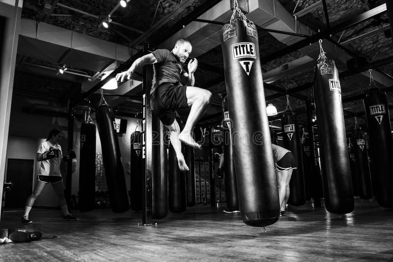 Boxer in der Turnhalle