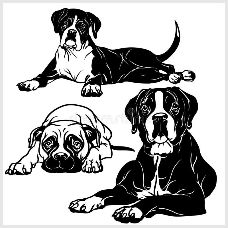 Boxer dog - vector set isolated illustration on white background royalty free illustration