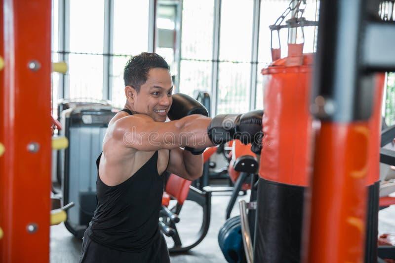 Boxer doing training on a punching bag stock photo
