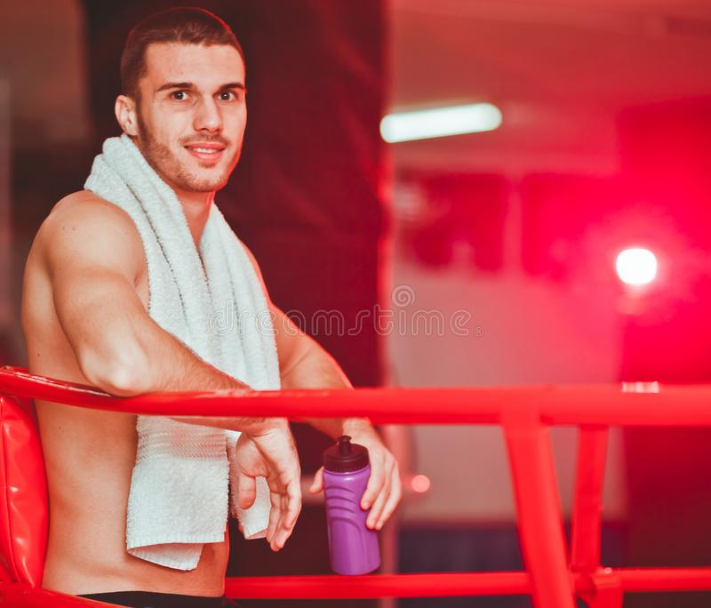 Boxer man stock photography