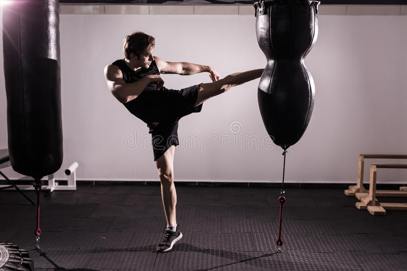 Boxer With Punch Bag In Action - A Man With A Tattoo In Red Boxing Gloves - Boxing royalty free stock photos