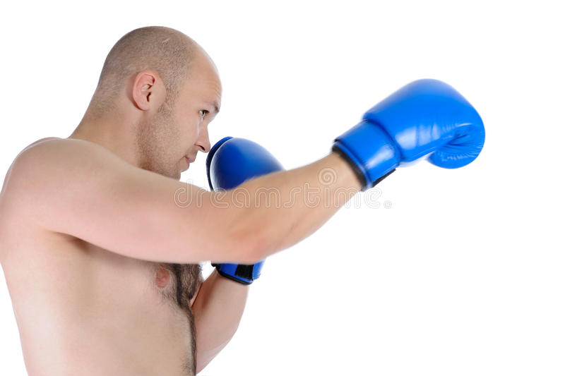 Boxer punches royalty free stock image