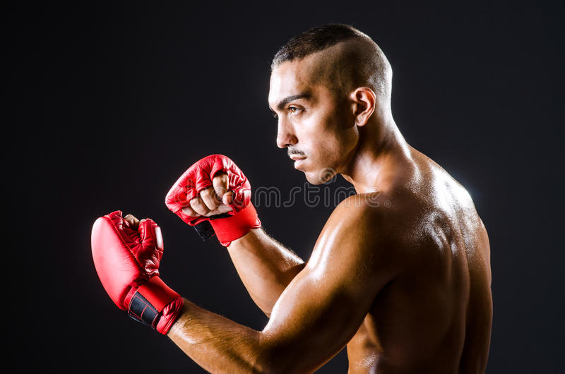 Download Boxer with red gloves stock photo. Image of corporate - 27314954