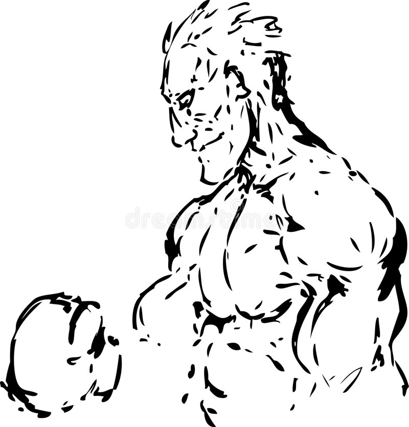Boxer sketch vector illustration