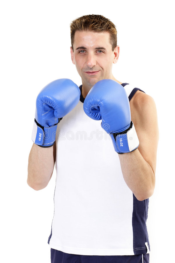 Boxer standing waiting royalty free stock image