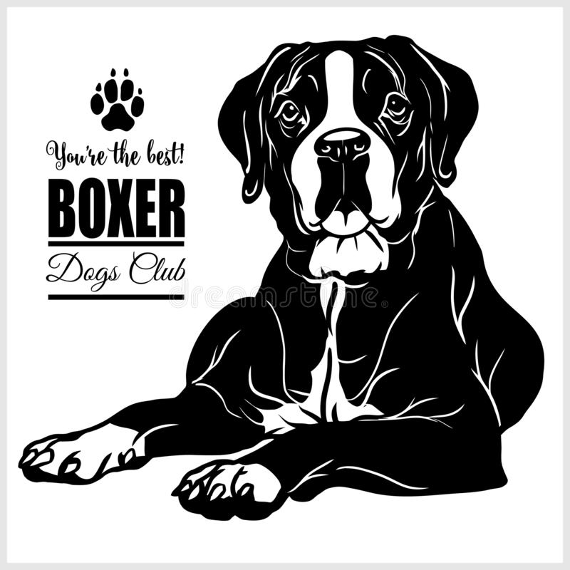 Boxer - vector illustration for t-shirt, logo and template badges royalty free illustration