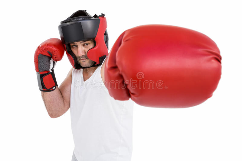 Boxer wearing head protector and gloves. Portrait of boxer wearing head protector and gloves isolated on white background stock photos