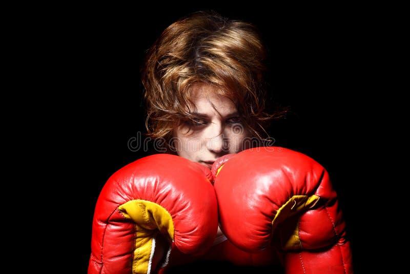 Boxerdame stockbild
