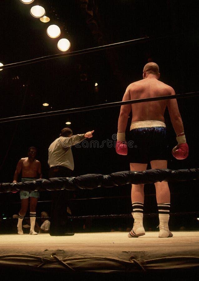 boxers stock afbeelding