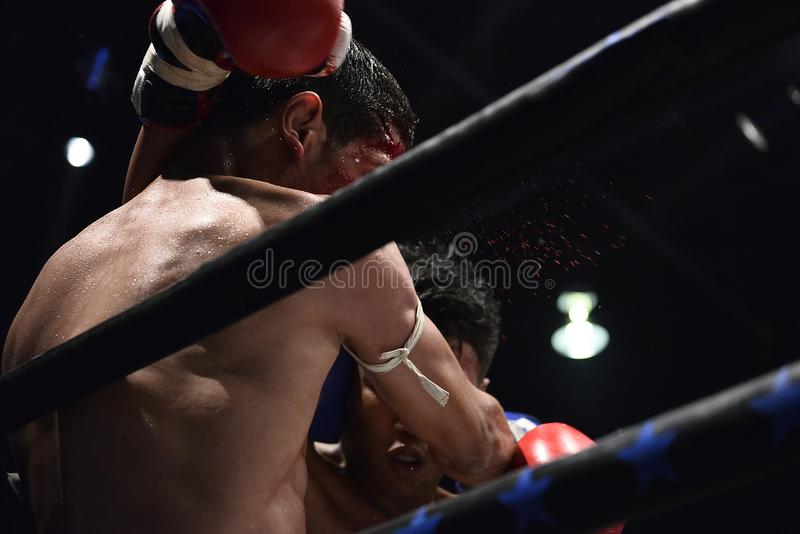 Boxers on the stage fiercely fight royalty free stock photography