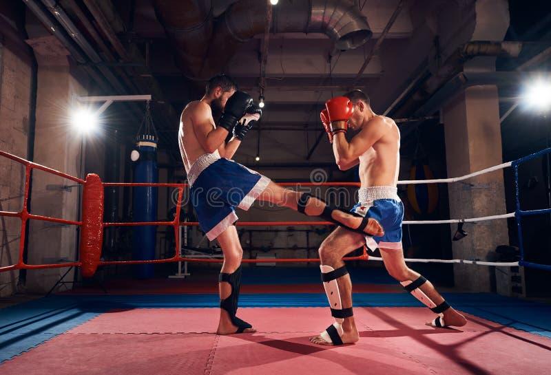 Boxertraining, das im Ring am Fitnessstudio kickboxing ist stockfoto