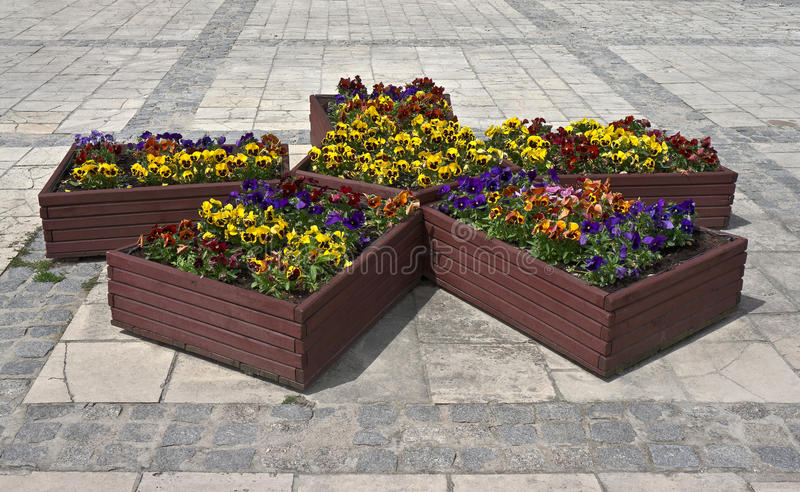 Flowerpots with flowers on the pavement stock photos