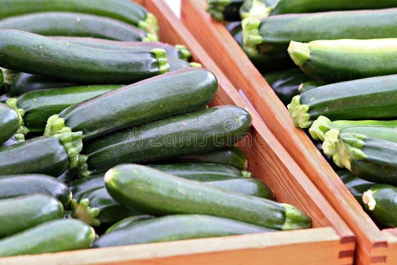 Boxes of Zucchini stock photos