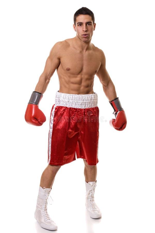 Download Boxeur image stock. Image du athlète, studio, type, sport - 23249759