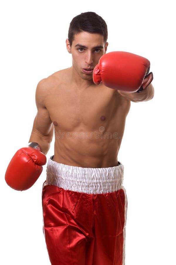 Boxeur photographie stock libre de droits