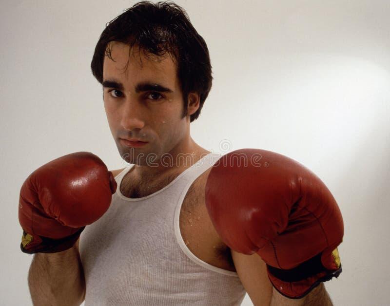 Download Boxeur image stock. Image du exercice, boxe, gants, sports - 65745