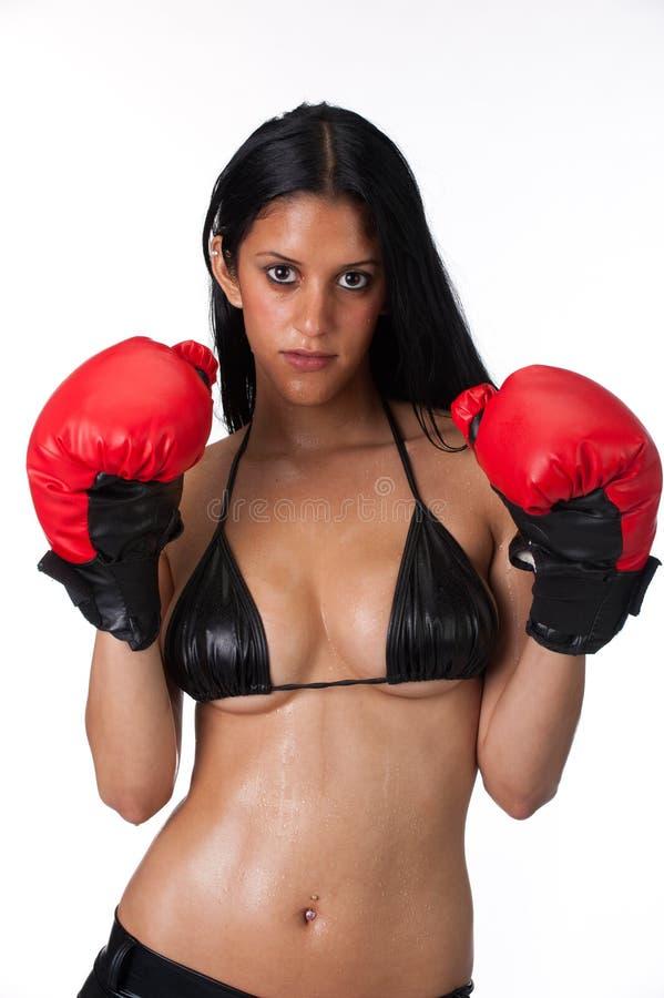 Boxeur attirant images libres de droits