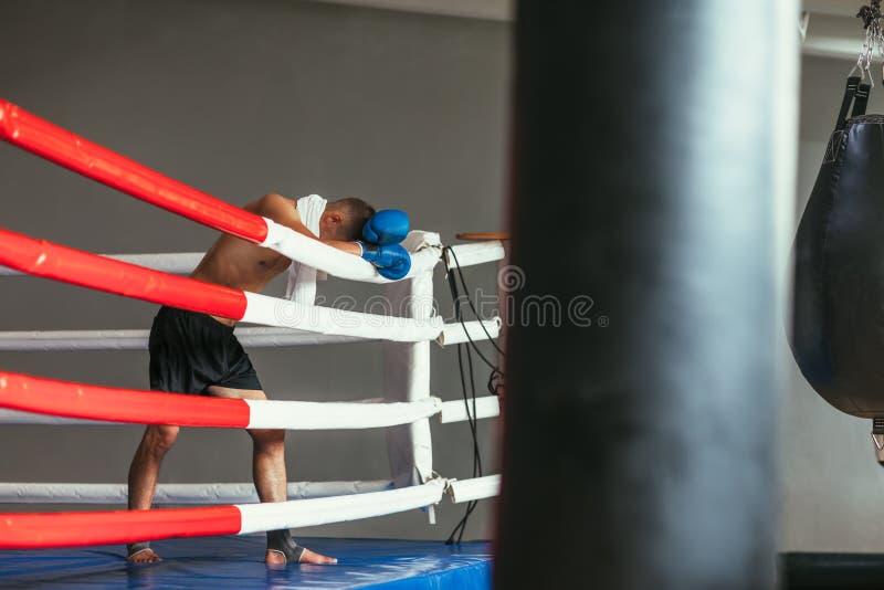 Boxeur fatigué se reposant dans le ring, chef sur des gants photo stock
