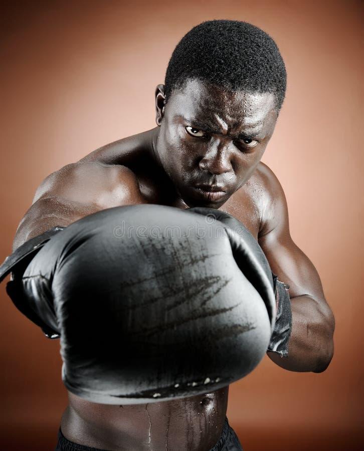Boxeur intense image stock