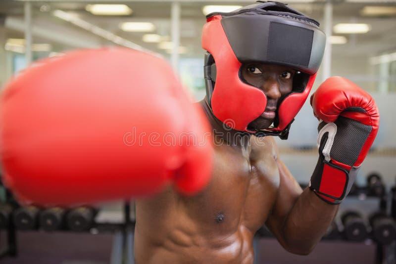 Boxeur masculin attaquant avec sa droite image stock