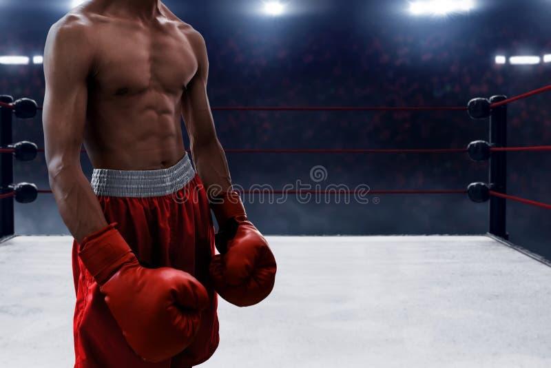 Boxeur musculaire dans l'anneau photo stock