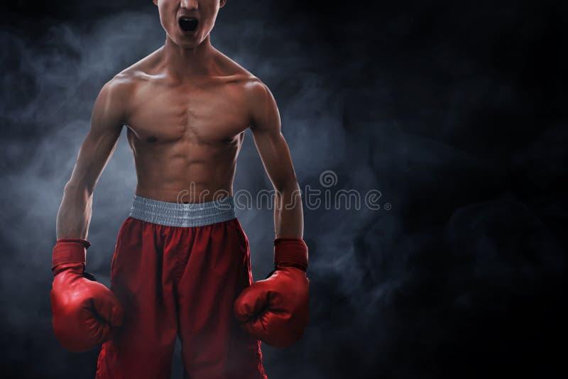 Boxeur musculaire fort sur des milieux de fumée image stock