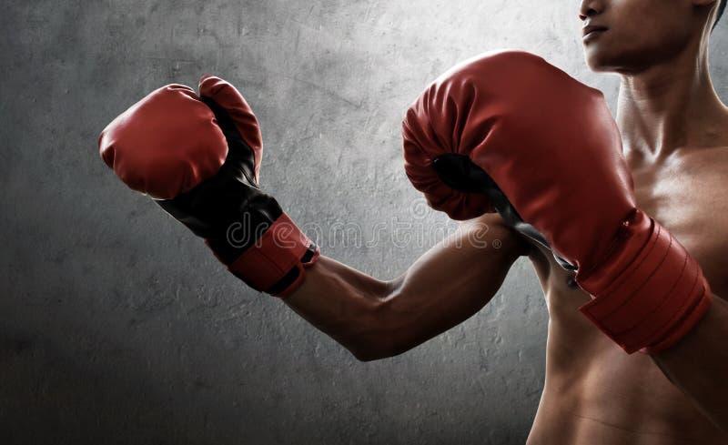 Boxeur musculaire fort sur des milieux de mur images libres de droits