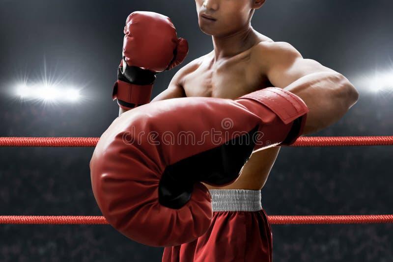 Boxeur musculaire fort sur l'anneau photographie stock libre de droits
