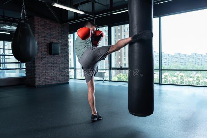 Boxeur professionnel travaillant dans le gymnase moderne avec la vue de ville photographie stock libre de droits