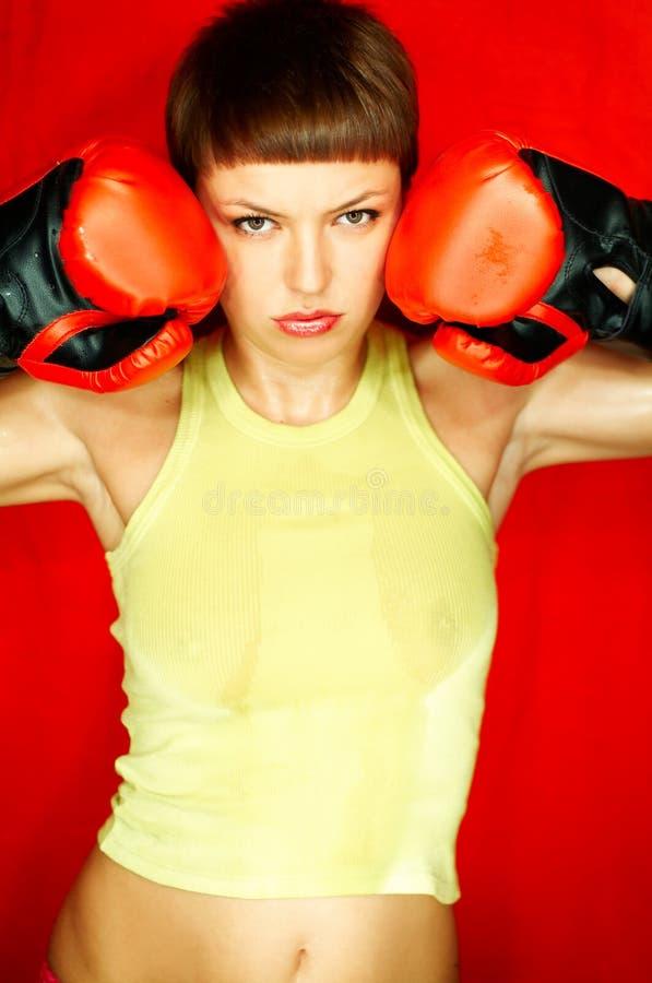 Download Boxeur rouge photo stock. Image du perforateur, femelle - 730320