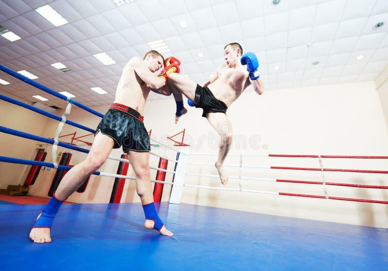 Boxeurs thaïlandais de Muay à l'anneau de formation photo stock