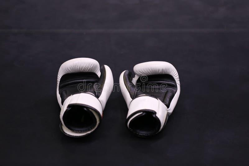 Boxhandschuhe auf dunklem Hintergrund in der Sportturnhalle stockfotografie