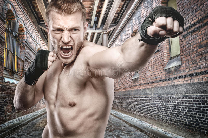 Download Boxing stock image. Image of adult, boxer, active, fitness - 22765937