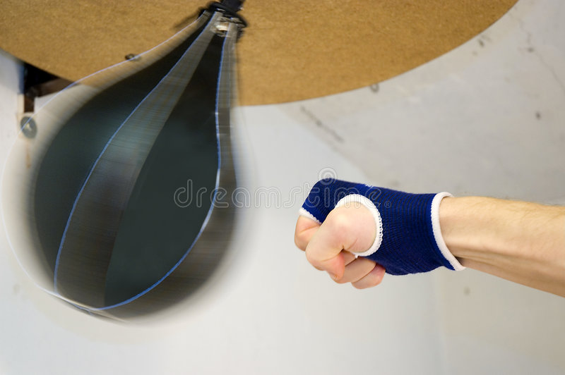Download Boxing stock photo. Image of training, boxing, prizefighting - 4306388