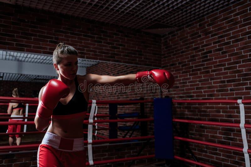 boxing fotografia stock libera da diritti