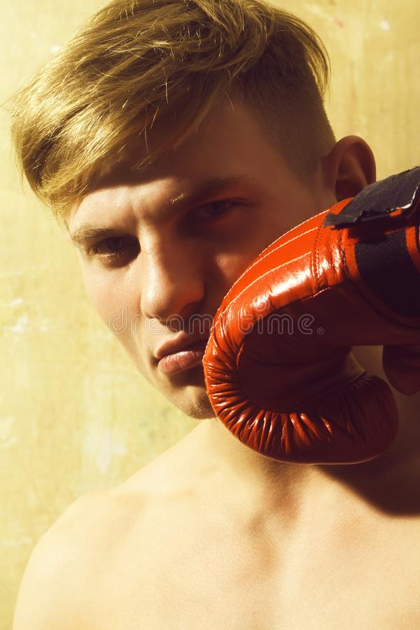 Handsome man, boxer, posing with red, boxing glove royalty free stock images