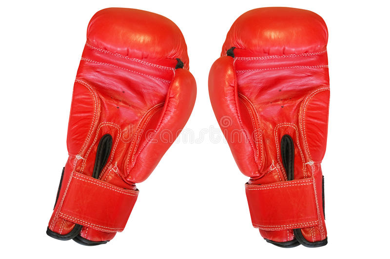 Boxing glove. Under the white background royalty free stock photo