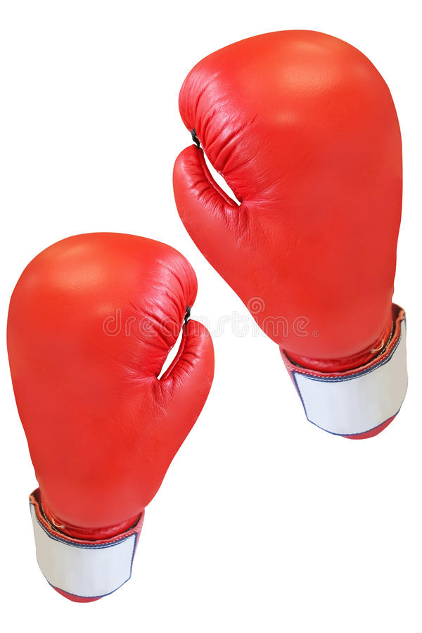 Boxing glove. Under the white background royalty free stock image