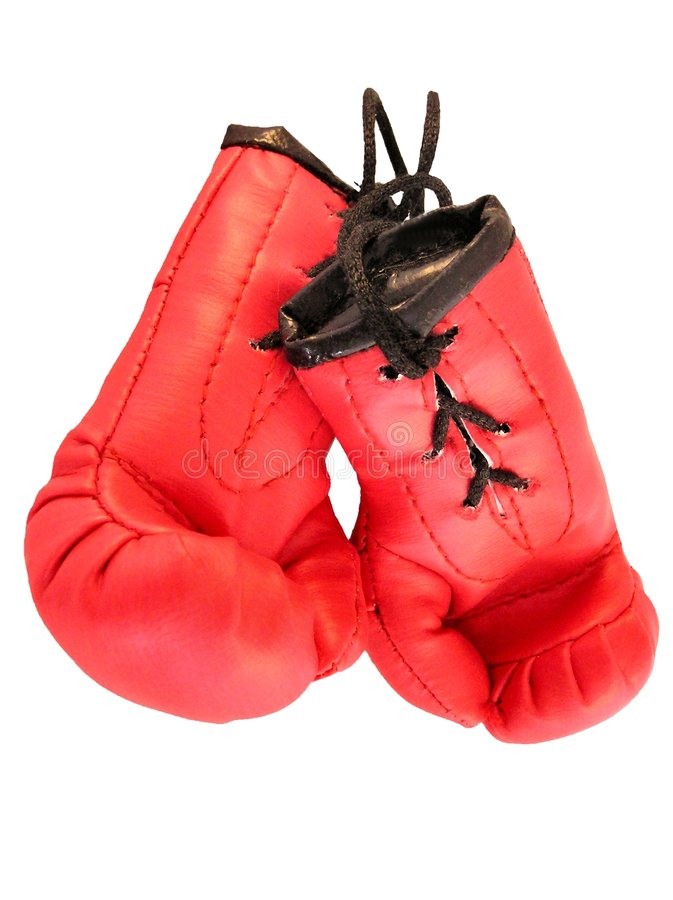 Boxing Gloves 4 royalty free stock photo