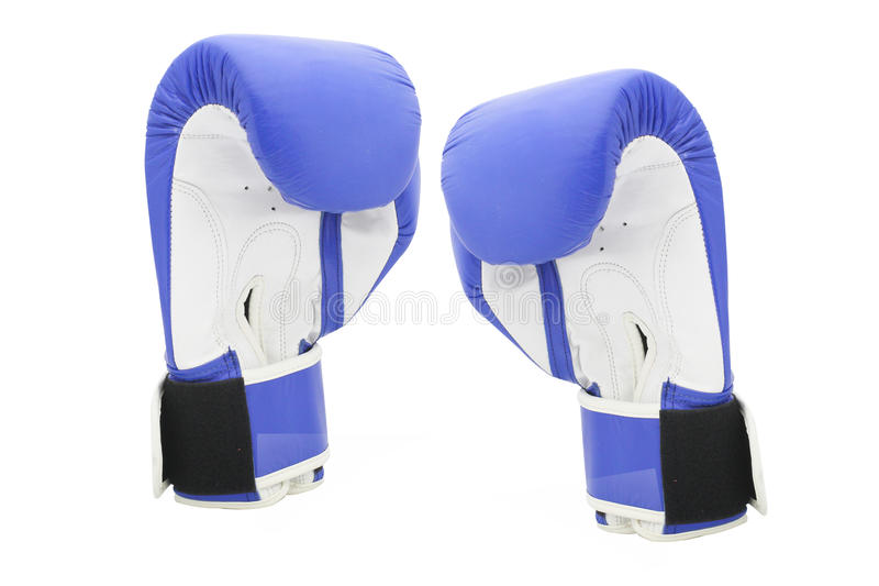 Boxing gloves. Under the white background stock images